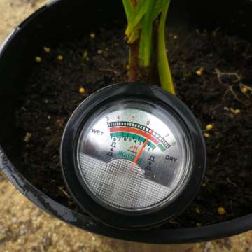 Professional soil pH - moisture meter in use