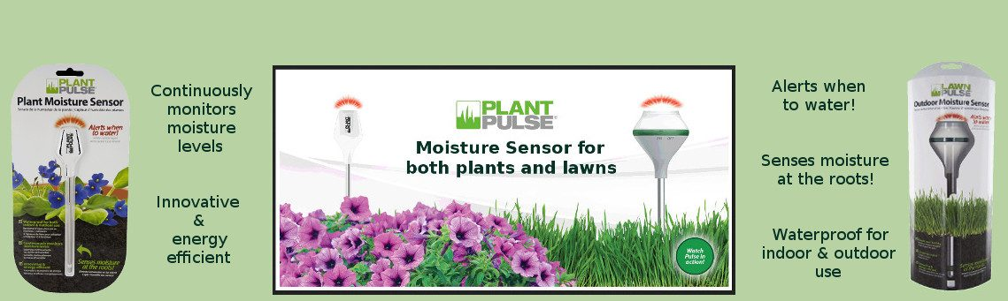 Plant Pulse moister sensor for potplants and lawn