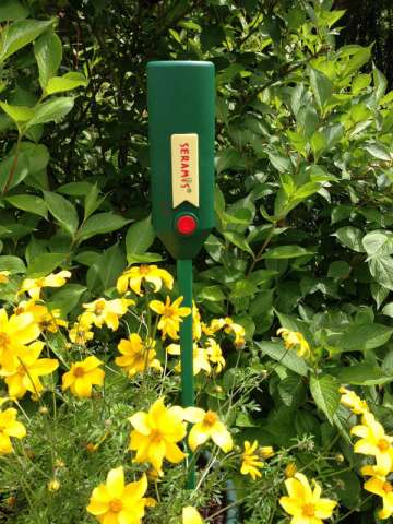 Seramis electronic moisture meter in potted plant