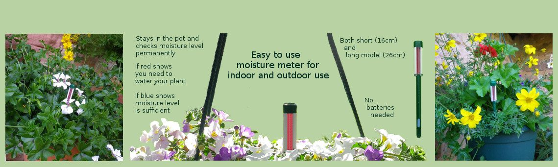 Measure soil moisture level with seramis moisture stick