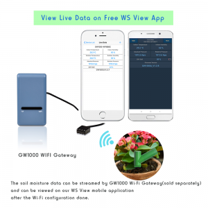 Ecowitt Gateway with soil moisture sensor