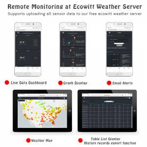 Ecowitt Remote Monitoring Live-Daten