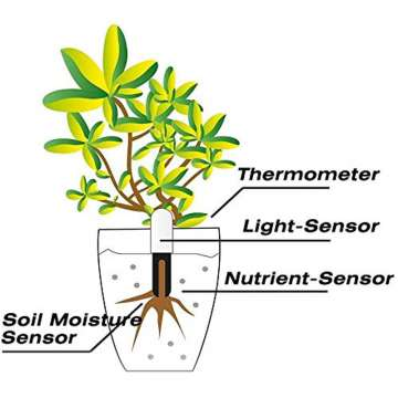 Measure light nutrient soil moisture and temperature
