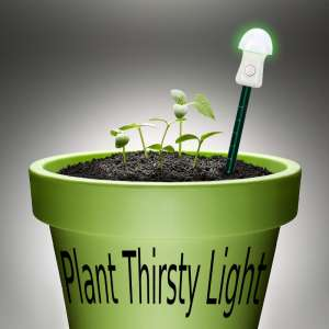 Plant Thirsty Light Green