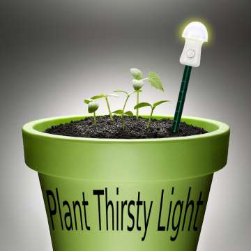Plant Thirsty Light Yellow